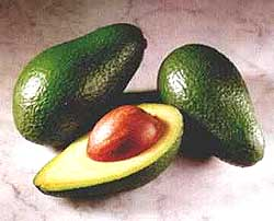 gallery/images-exotic-avocado